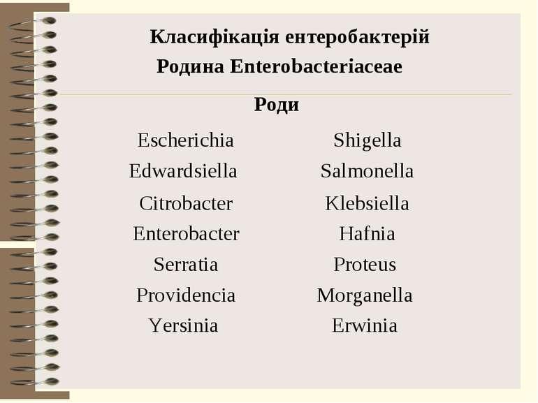 Класифікація ентеробактерій Родина Enterobacteriaceae Роди Escherichia Shigel...