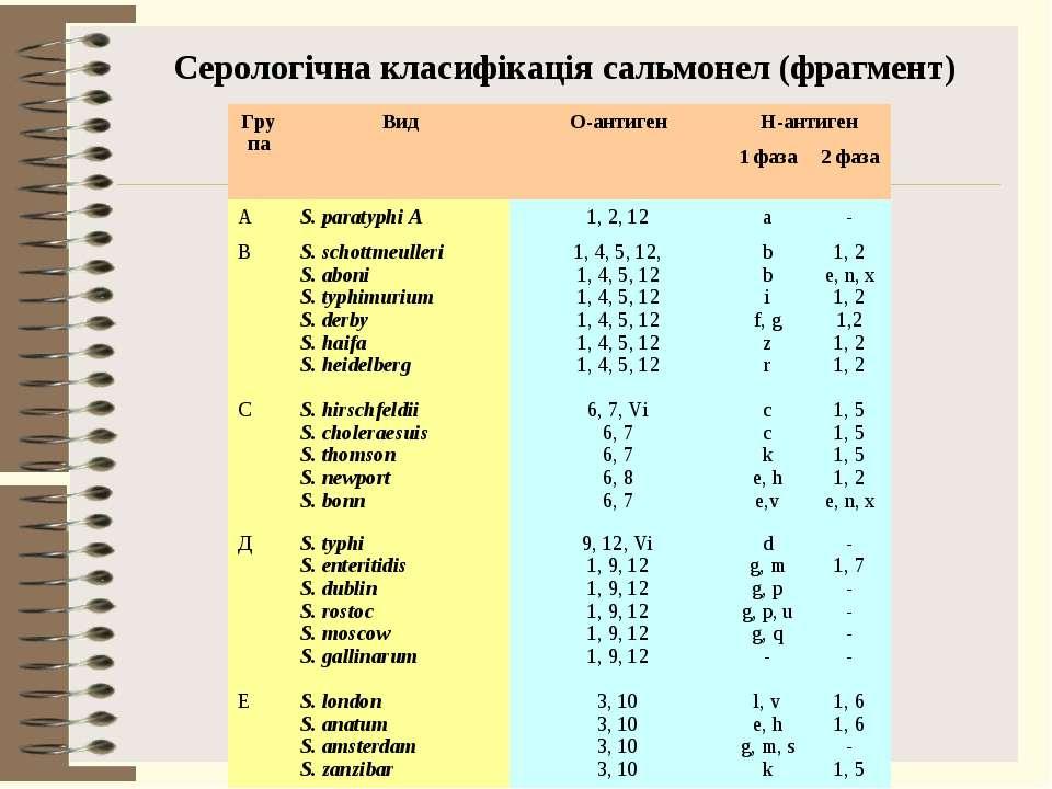 Серологічна класифікація сальмонел (фрагмент) Група Вид О-антиген Н-антиген 1...