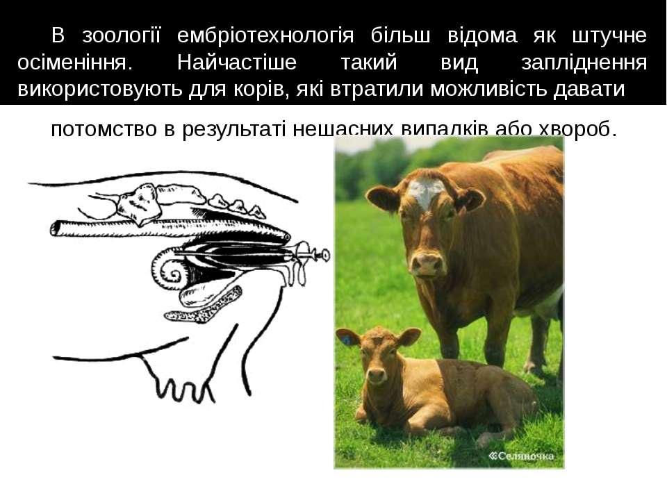 В зоології ембріотехнологія більш відома як штучне осіменіння. Найчастіше так...