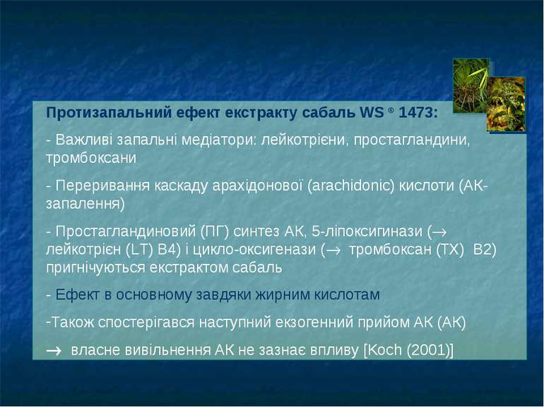Протизапальний ефект екстракту сабаль WS ® 1473: - Важливі запальні медіатори...