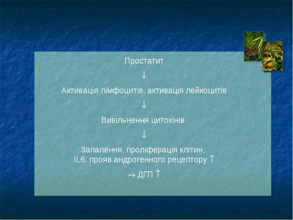 Простатит Активація лімфоцитів, активація лейкоцитів Вивільнення цитокінів За...