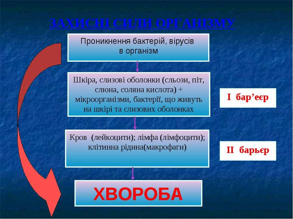 Проникнення бактерій, вірусів в організм Шкіра, слизові оболонки (сльози, піт...