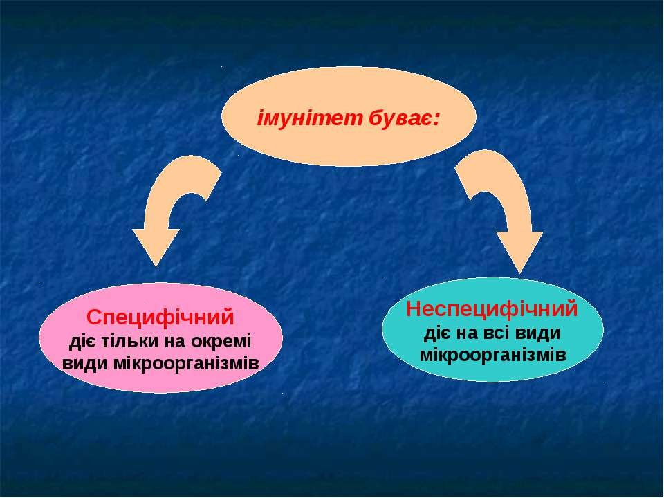 імунітет буває: Специфічний діє тільки на окремі види мікроорганізмів Неспеци...