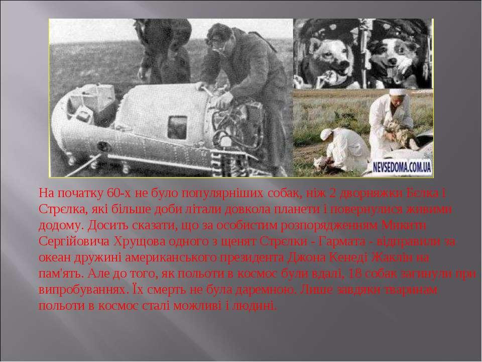 На початку 60-х не було популярніших собак, ніж 2 дворняжки Бєлка і Стрєлка, ...