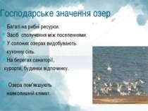Господарське значення озер Багаті на рибні ресурси. Засіб сполучення між посе...