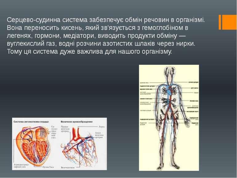 Серцево-судинна система забезпечує обмін речовин в організмі. Вона переносить...