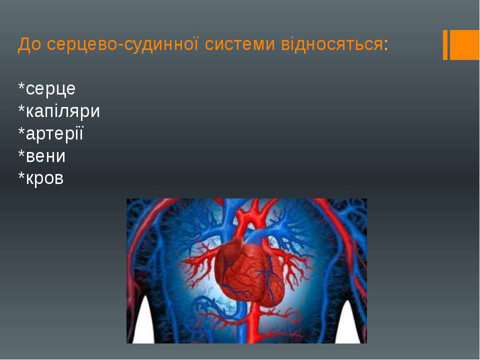 До серцево-судинної системи відносяться: *серце *капіляри *артерії *вени *кров