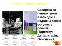 Х і м і ч н і в л а ст и в о ст і . Сахароза за певних умов взаємодіє з водою...