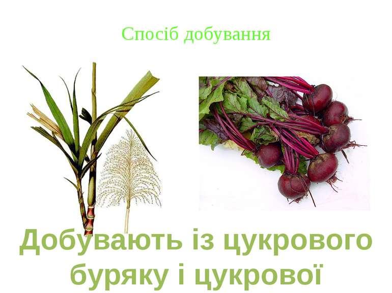 Спосіб добування Добувають із цукрового буряку і цукрової тростини.