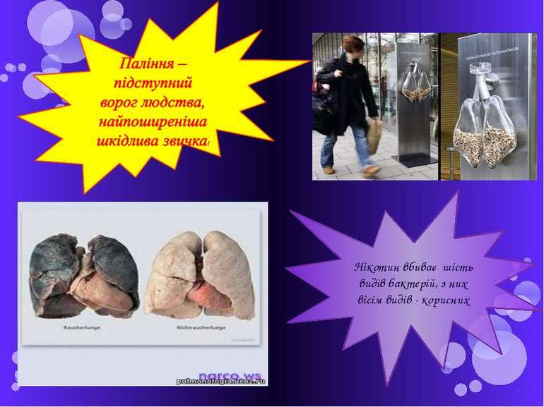 Нікотин вбиває шість видів бактерій, з них вісім видів - корисних