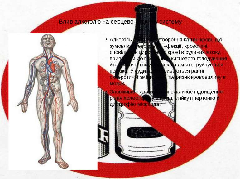 Влив алкоголю на серцево-судинну систему Алкоголь пригнічує утворення клітин ...
