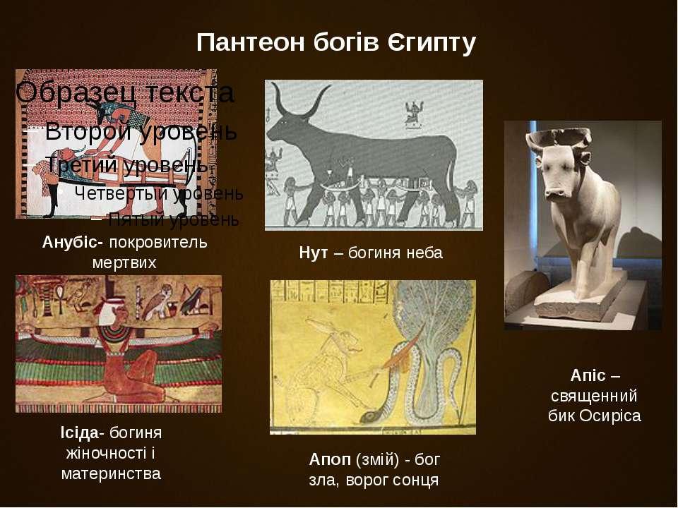 Пантеон богів Єгипту Анубіс- покровитель мертвих Апіс – священний бик Осиріса...