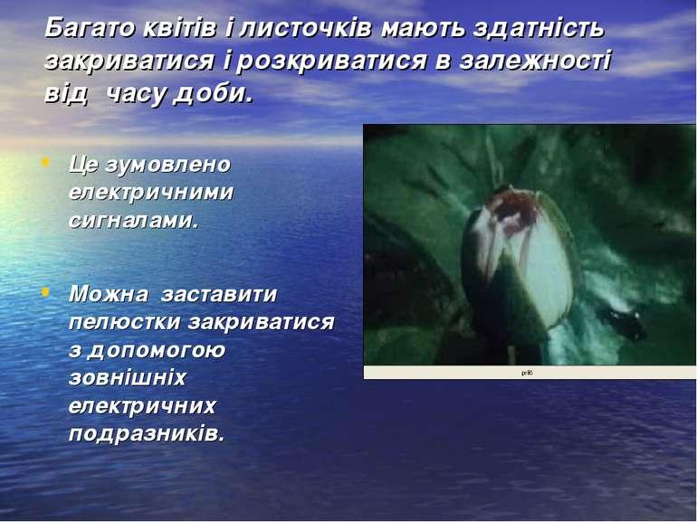 Багато квітів і листочків мають здатність закриватися і розкриватися в залежн...