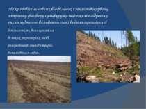 діяльності,як винищення на великих територіях лісів, розорювання степів і пре...