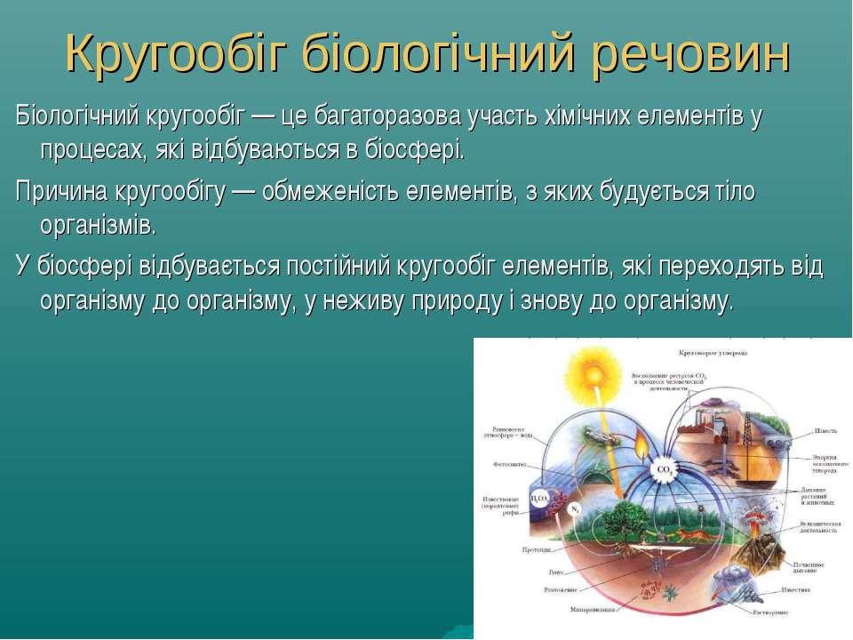 Кругообіг біологічний речовин Біологічний кругообіг — це багаторазова участь ...