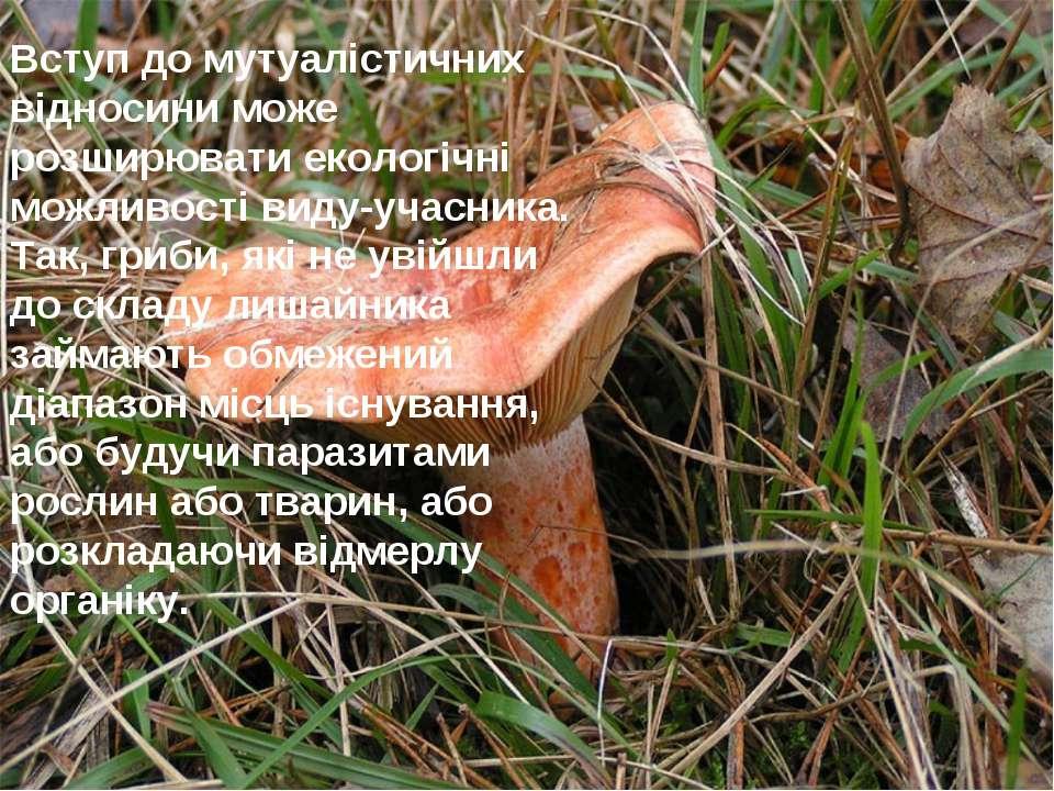 Вступ до мутуалістичних відносини може розширювати екологічні можливості виду...