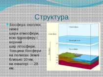Структура Біосфера охоплює нижні шариатмосфери, всюгідросферуі верхній шар...