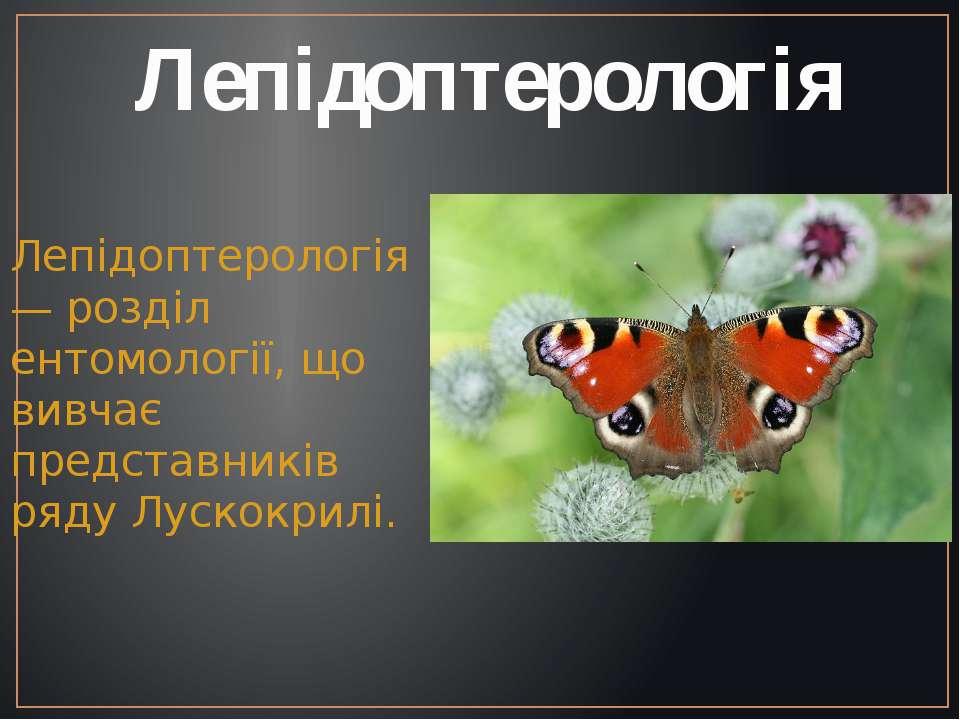 Лепідоптерологія Лепідоптерологія — розділ ентомології, що вивчає представник...