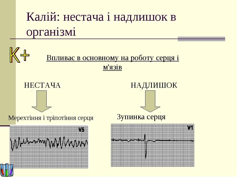 Калій: нестача і надлишок в організмі Впливає в основному на роботу серця і м...