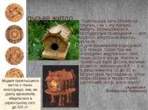 """Трипільське житло """"Трипільська хата стояла на слупах, і на 1-му поверсі, мабу..."""