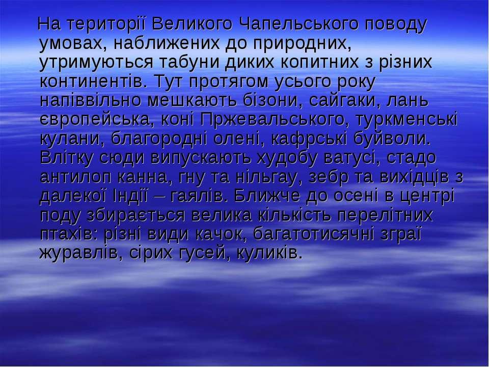 На території Великого Чапельського поводу умовах, наближених до природних, ут...