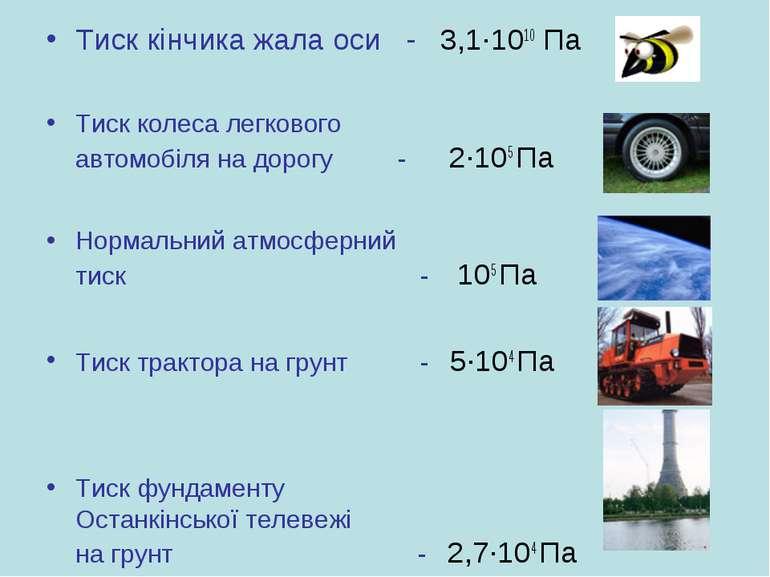 Тиск кінчика жала оси - 3,1·1010 Па Тиск колеса легкового автомобіля на дорог...