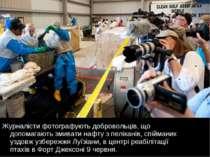 Журналісти фотографують добровольців, що допомагають змивати нафту з пелікані...