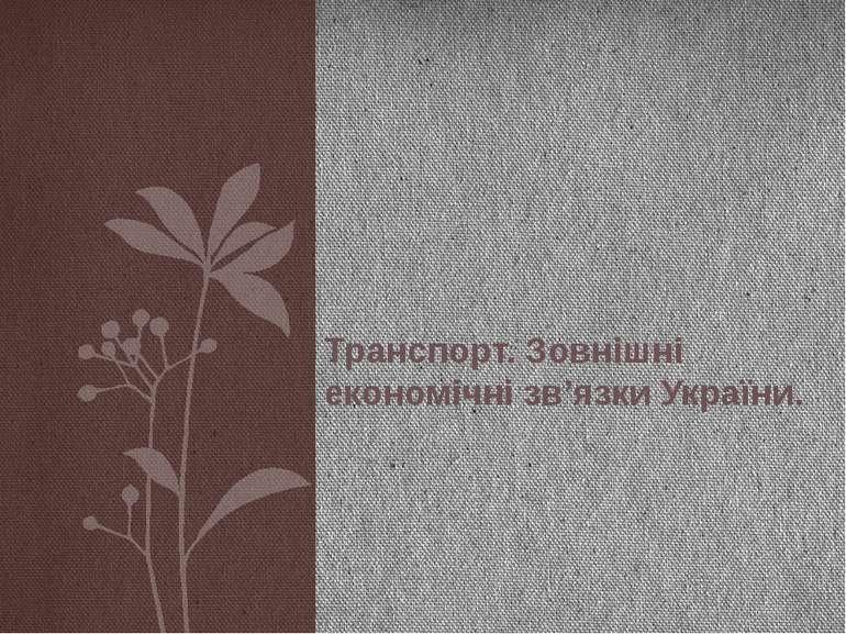 Транспорт. Зовнішні економічні зв'язки України.