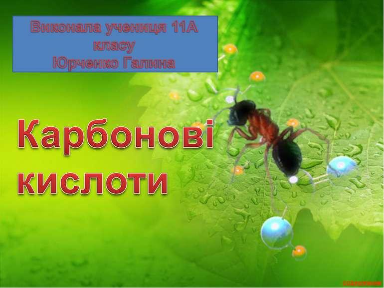 Карбоновые кислоты 11 хб