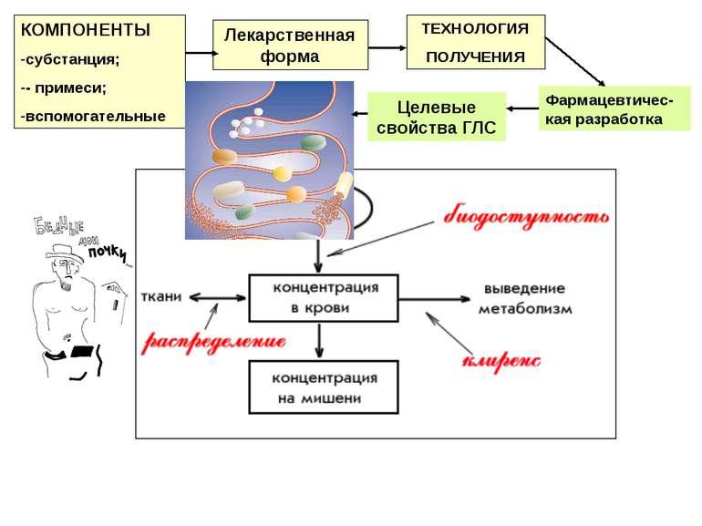 Лекарственная форма КОМПОНЕНТЫ субстанция; - примеси; вспомогательные ТЕХНОЛО...