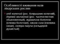 Особливості вживання назв лікарських рослин глід колючий (рос. боярышник колю...