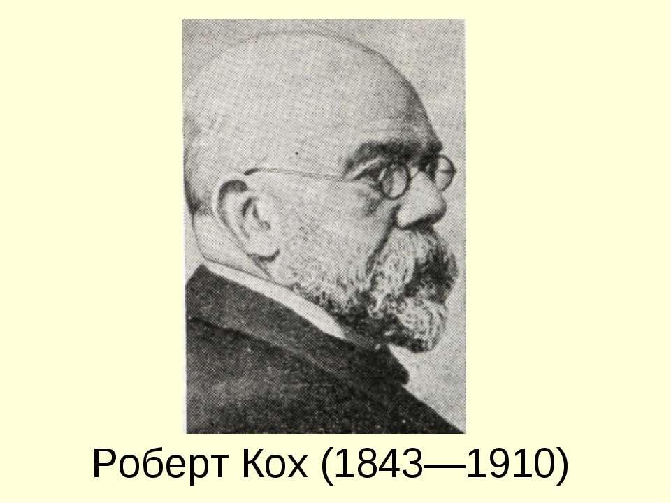 Роберт Кох (1843—1910)