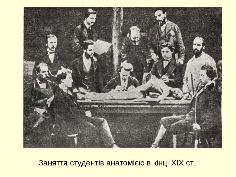 Заняття студентів анатомією в кінці XIX ст.