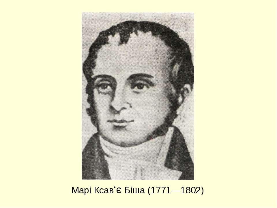 Марі Ксав'є Біша (1771—1802)