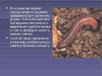 Більш важливі непрямі наслідки внесення дощовими хробаками в грунт органічних...