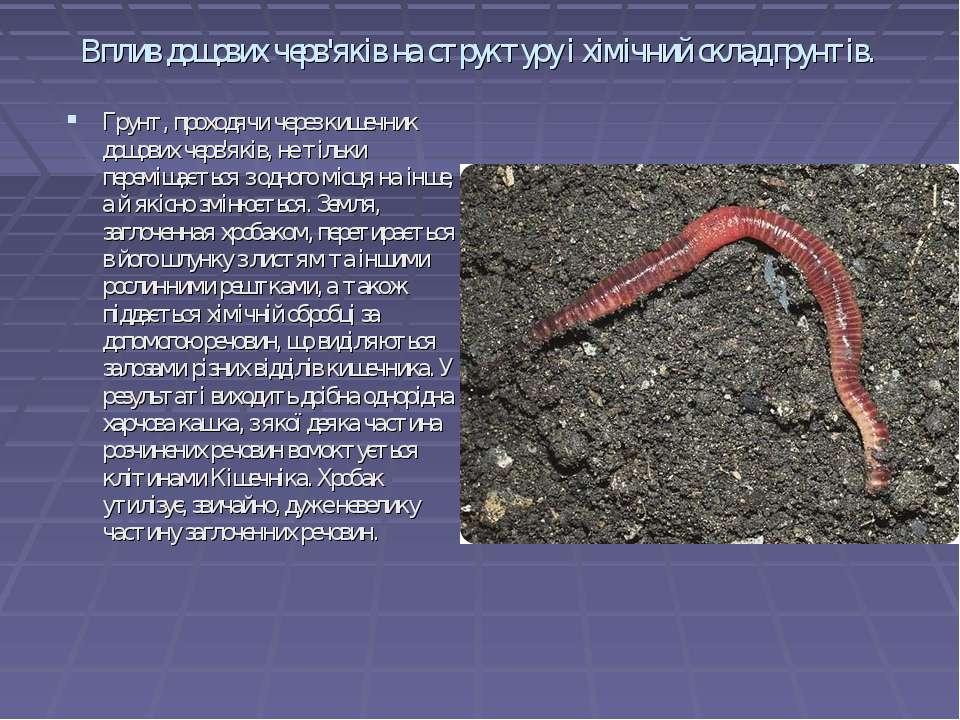 Вплив дощових черв'яків на структуру і хімічний склад грунтів. Грунт, проходя...