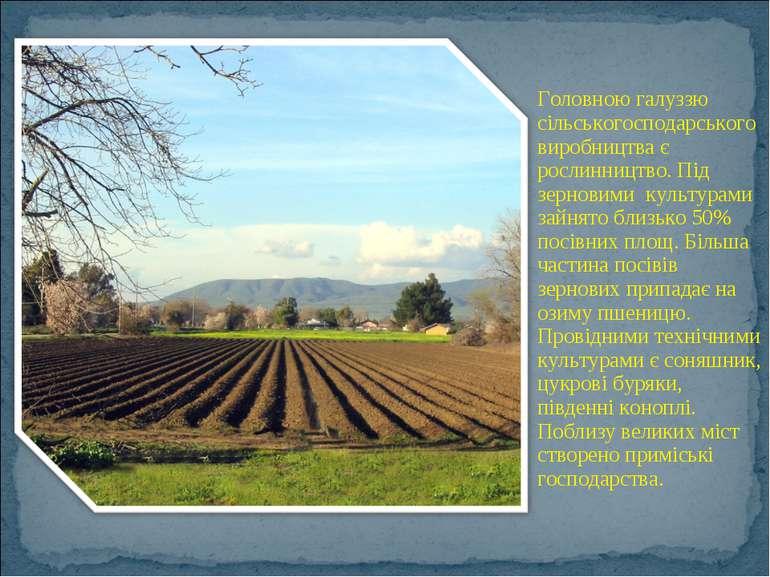 Головною галуззю сільськогосподарського виробництва є рослинництво. Під зерно...