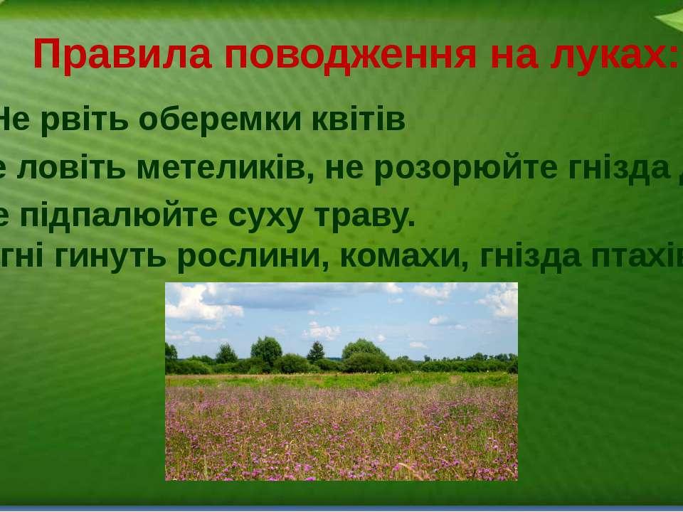 Правила поводження на луках: 1. Не рвіть оберемки квітів 2. Не ловіть метелик...