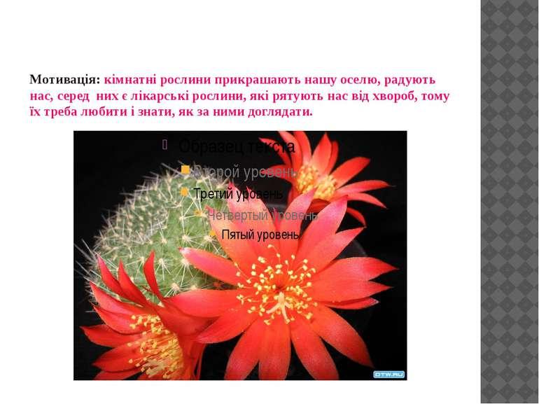 Мотивація: кімнатні рослини прикрашають нашу оселю, радують нас, серед них є ...