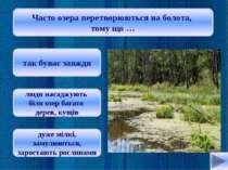 Які моря є в Україні? Каспійське та Чорне Азовське та Чорне Охотське та Біле ...