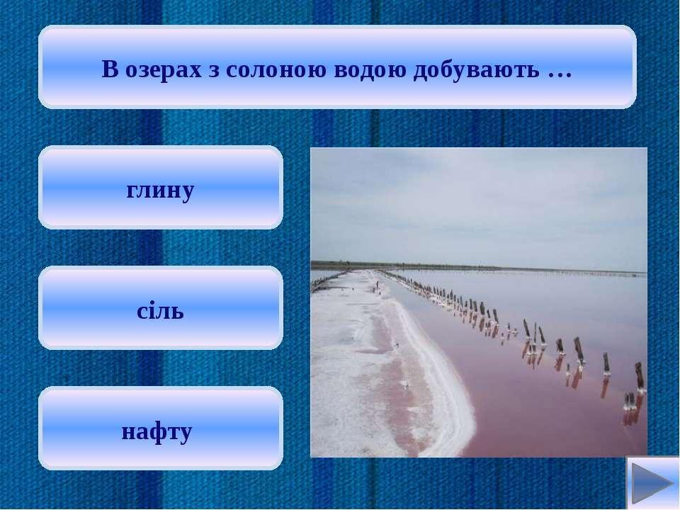 Найбільшим за площею прісним озером України є … Ялпуг Синевир Світязь Oksana:
