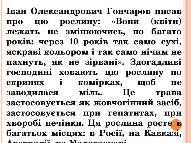 Іван Олександрович Гончаров писав про цю рослину: «Вони (квіти) лежать не змі...