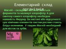Елементарний склад організмів Магній – складова частина багатьох ферментів та...