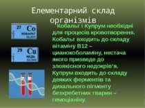 Кобальт і Купрум необхідні для процесів кровотворення. Кобальт входить до скл...