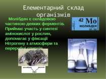 Молібден є складовою частиною деяких ферментів. Приймає участь у синтезі амін...