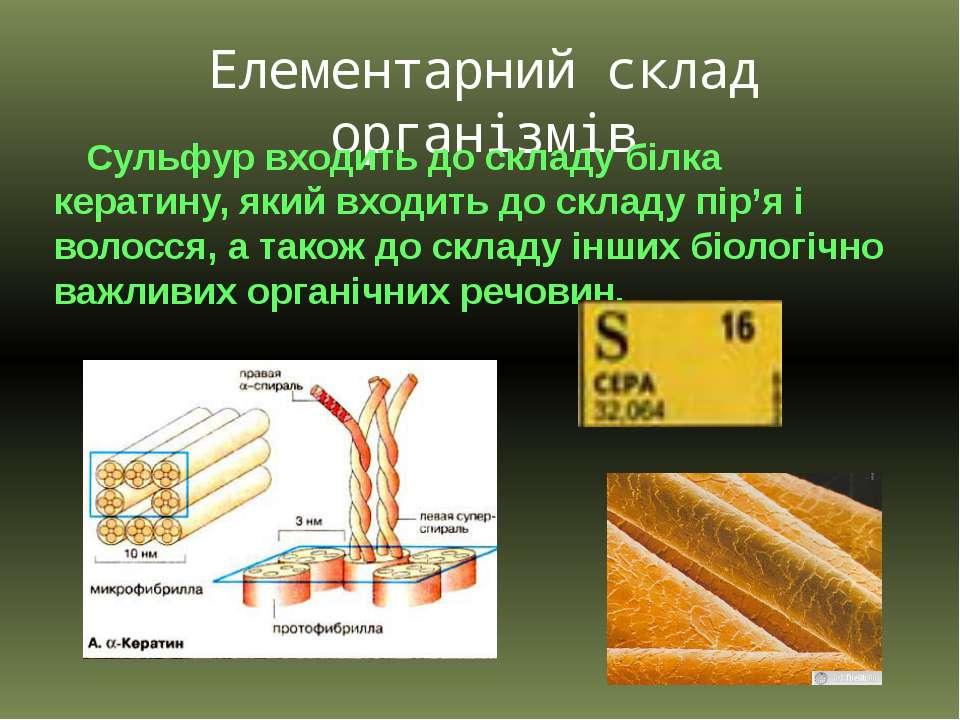 Елементарний склад організмів Сульфур входить до складу білка кератину, який ...