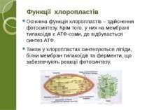 Основна функція хлоропластів – здійснення фотосинтезу. Крім того, у них на ме...