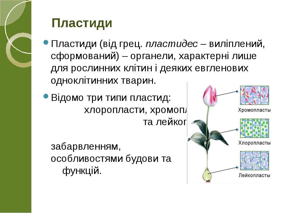 Пластиди (від грец. пластидес – виліплений, сформований) – органели, характер...