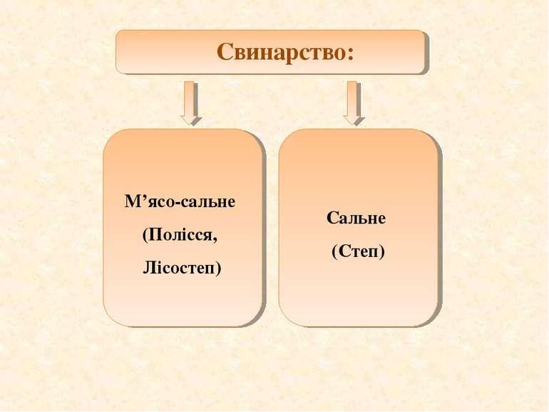 Свинарство: М'ясо-сальне (Полісся, Лісостеп) Сальне (Степ)
