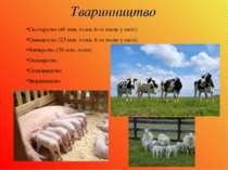 Тваринництво Скотарство (40 млн. голів, 6-те місце у світі) Свинарство (23 мл...